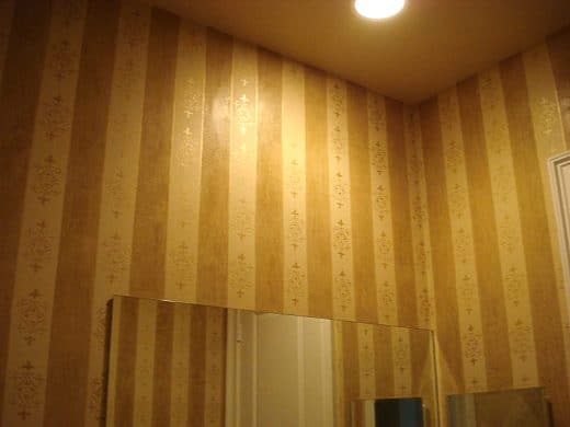 Faux Finishing Venetian Plaster